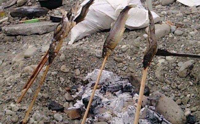 川BBQでの鮎の塩焼き写真