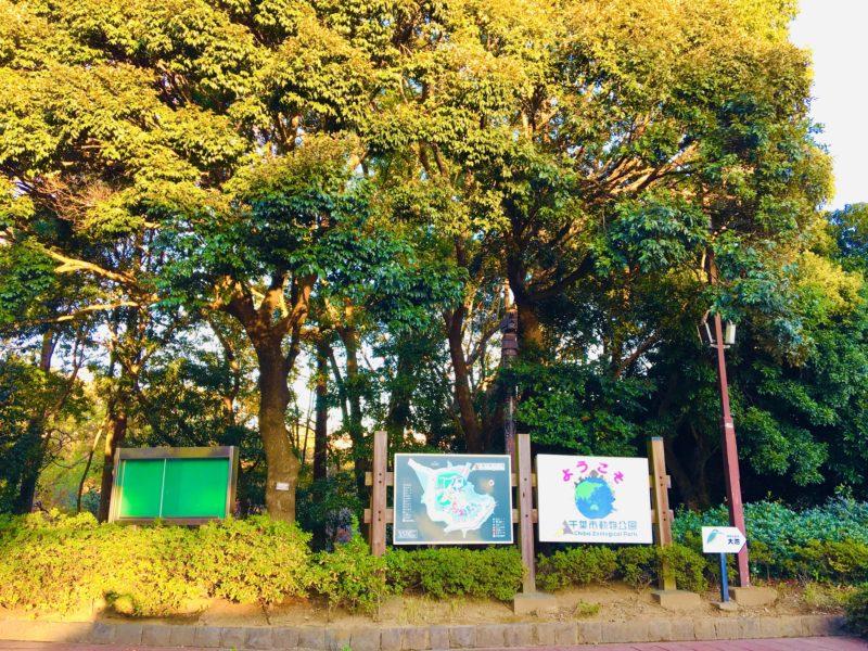 千葉市動物公園の正門紅葉